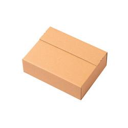 Pudełko wysyłkowe Cezeta Eco Standard z paskiem klejącym