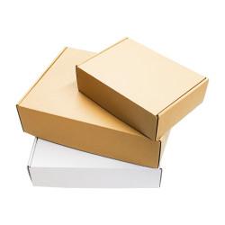 Zestaw próbek kartonów fasonowych